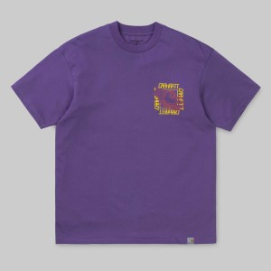 s-s-virtual-t-shirt-dusty-mauve-551